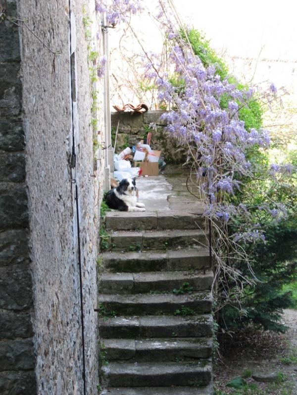 Terrasse et escaliers à Chassagnes