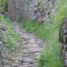 Chemin pavé à Chassagnes